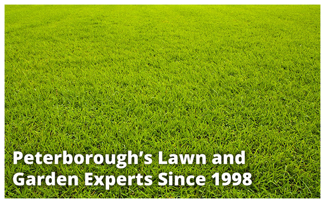 Peterborough's Lawn and Garden Experts Since 1998 | freshly mowed grass